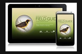 MV field guide