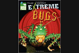 Most Extreme bugs